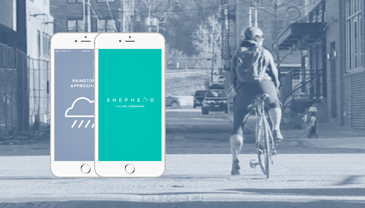 Shepherd, bicycle safety system