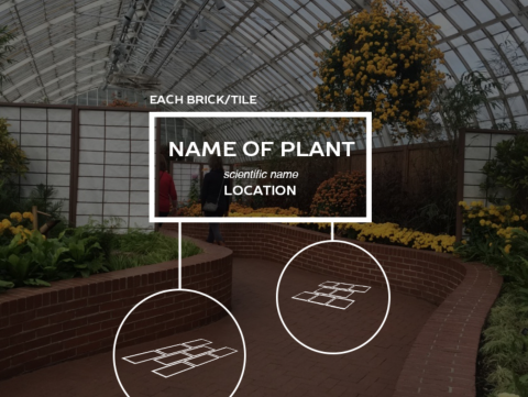 Brick Diagram/Implementation