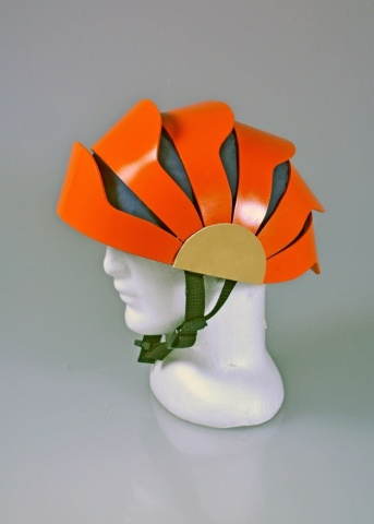 Protex Helmet